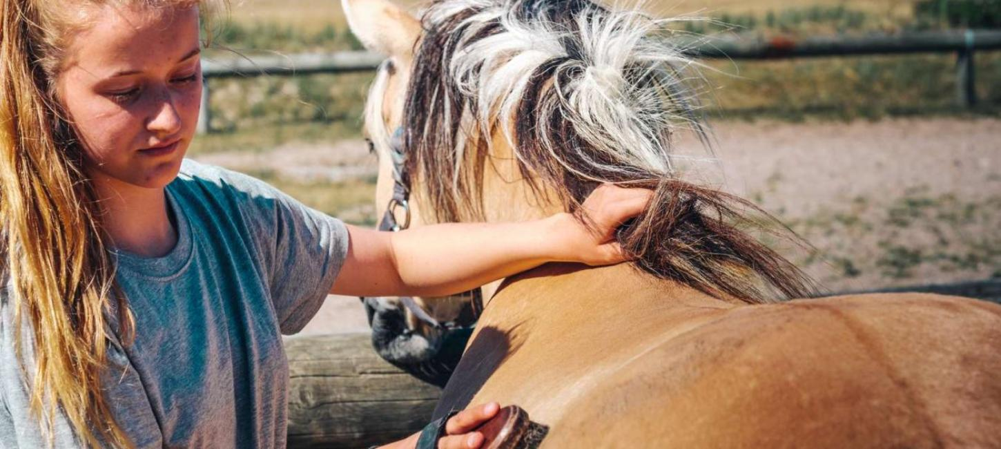 Horseback riding holiday